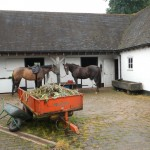 Stable-block